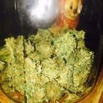 Cannabis Reviews