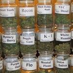 Marijuana Listings Mobile